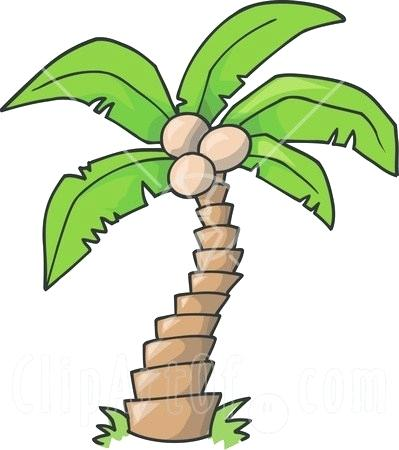 399x450 Simple Palm Tree Drawing Free Coconut Tree Drawing Download Clip