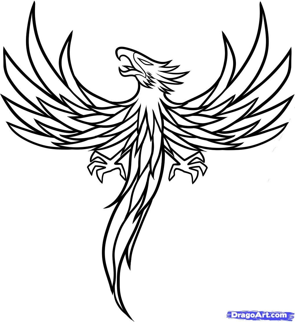 1020x1114 Simple Phoenix Line Drawing