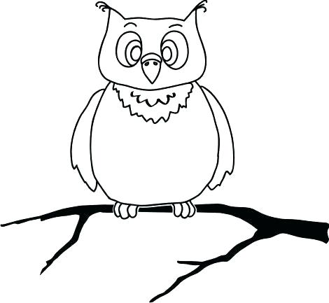 470x433 owl drawing outline owl outline all about owl simple owl outline