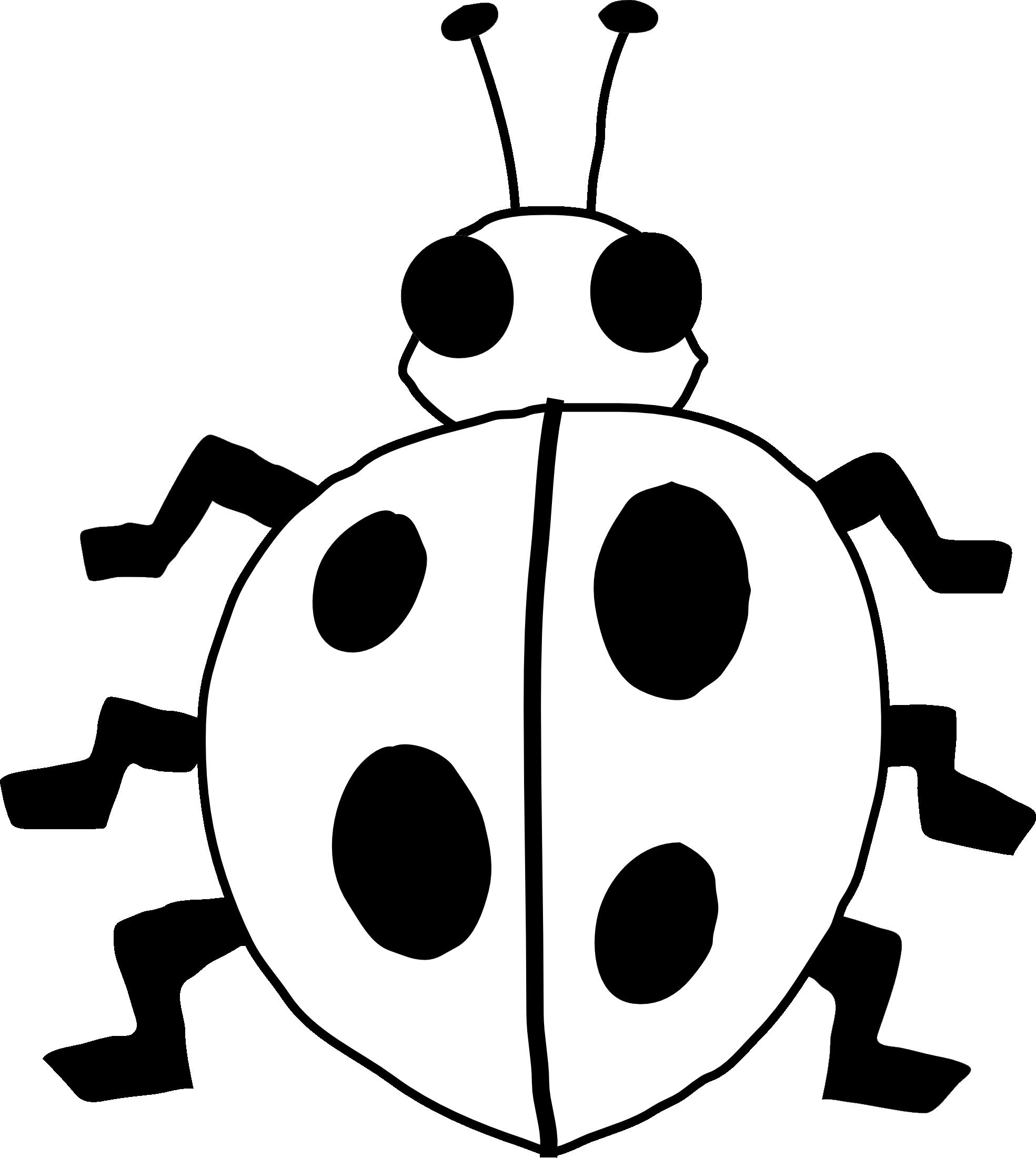 Simple Panda Drawing