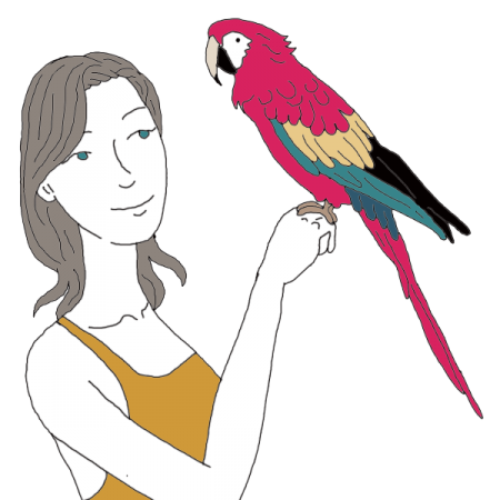 Simple Parrot Drawing