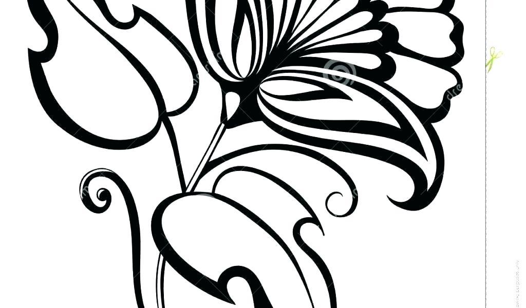 1024x600 Easy Flower Drawings