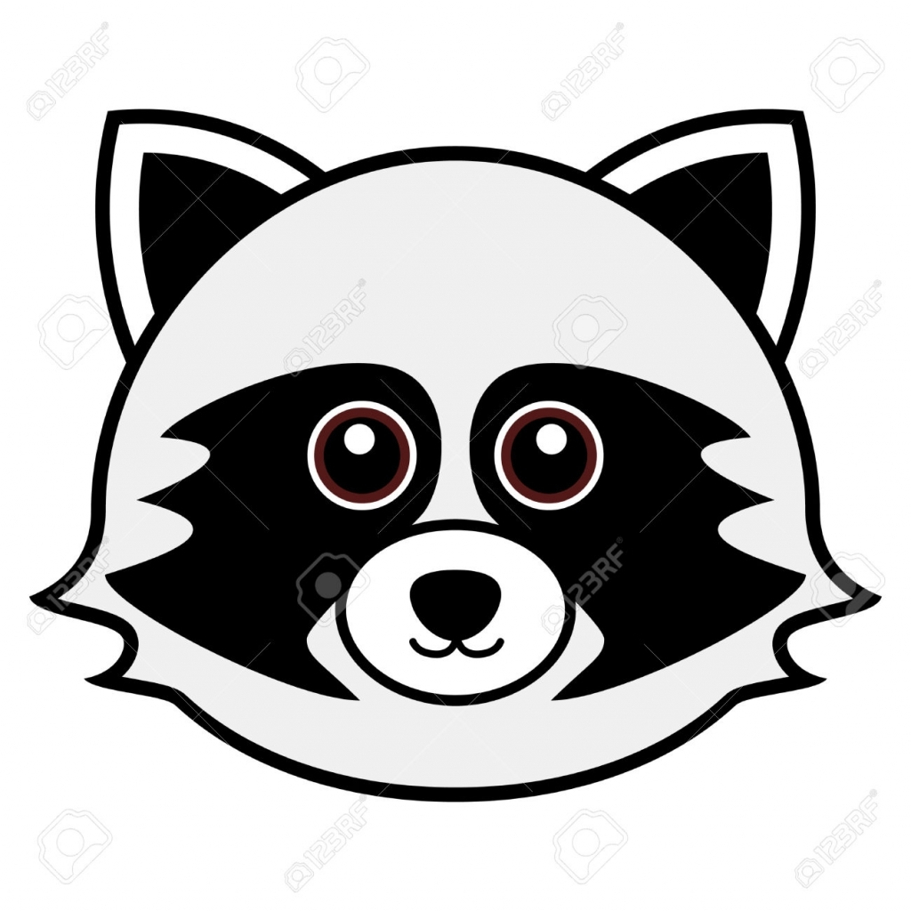 Simple Raccoon Drawing