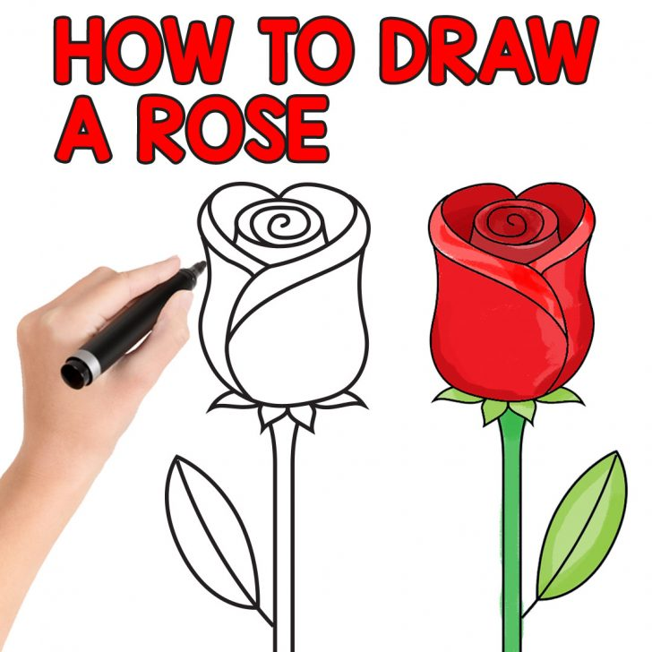728x728 Easy Drawing Of A Rose Bud Pencil Cute Blue Beautiful Plant