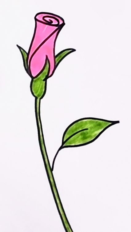 426x756 Learn How To Draw A Seamless Rosebud In A Few, Easy Steps! Perfect