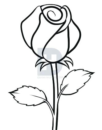 331x421 Easy To Draw A Rose Running