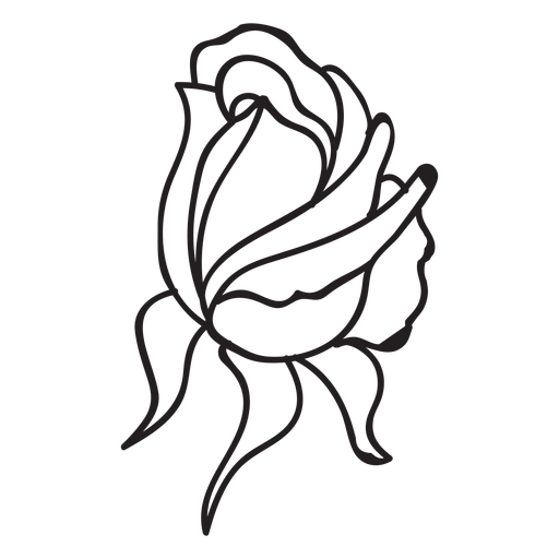 512x512 Bud Drawing Single Rose Transparent Png Clipart Free Download