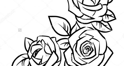 471x250 Easy Drawing Of A Rose Bud Beautiful Red Petal Black Iydunetwork