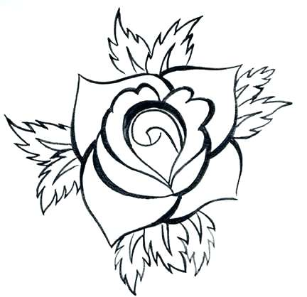 432x418 A Simple Rose Drawing Simple Rose Outline Easy Rose Drawing