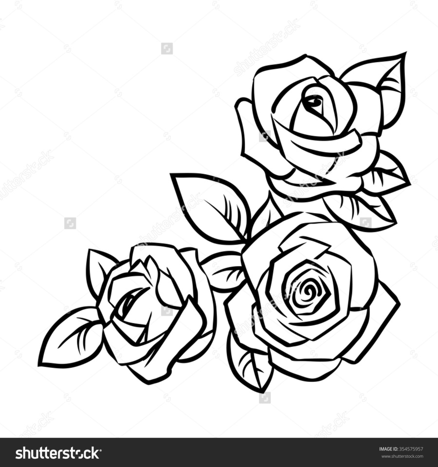 900x960 Outline Drawing Of Rose Flower