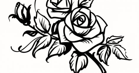 471x250 Black And White Flowers Simple Rose Drawing Free Border Line