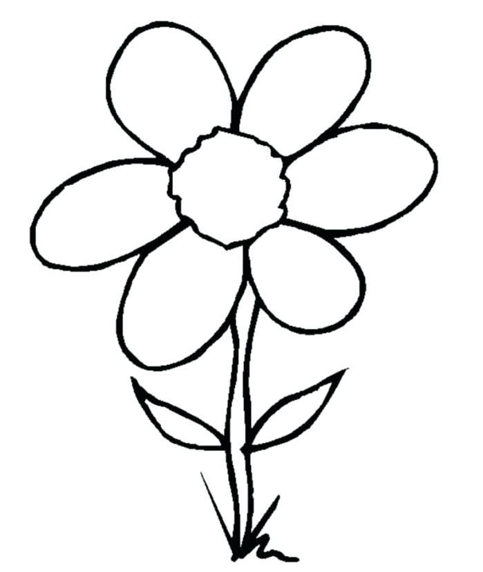 699x828 Flower Drawing Easy Drawn Flower Simple Rose Flower Drawing Easy