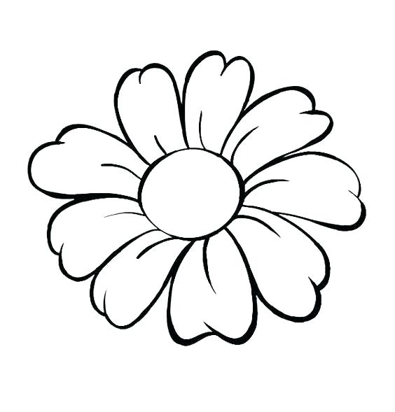 564x589 Rose Flower Outline Flower Drawing Outline Coloring Pages