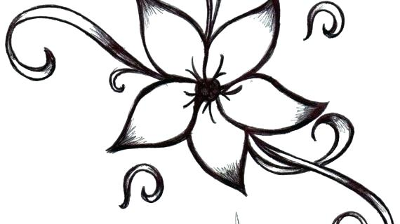 570x320 Simple And Easy Flower Sketches Easy Flower Designs To Draw