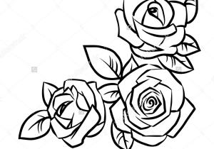 300x210 Simple Rose Flower Drawings
