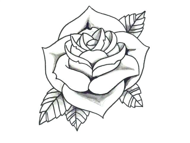 640x480 Simple Roses Drawings How To Draw Simple Flowers Step Simple