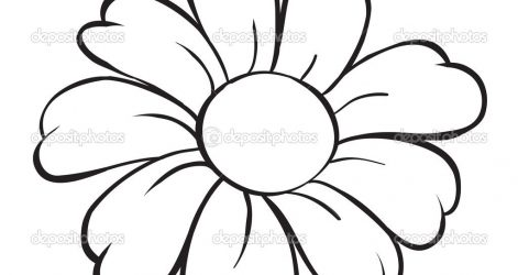 471x250 Beautiful Rose Flower Drawings And Easy Bouquets Coreldraw