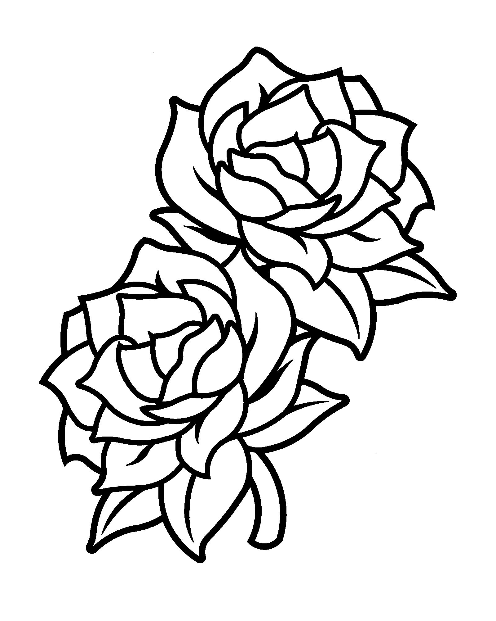1600x2000 Black And White Flowers Simple Rose Drawing Free Border Line