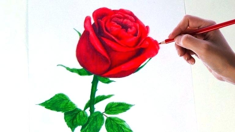 768x432 Drawing Flower Rose How To Draw Flowers Step