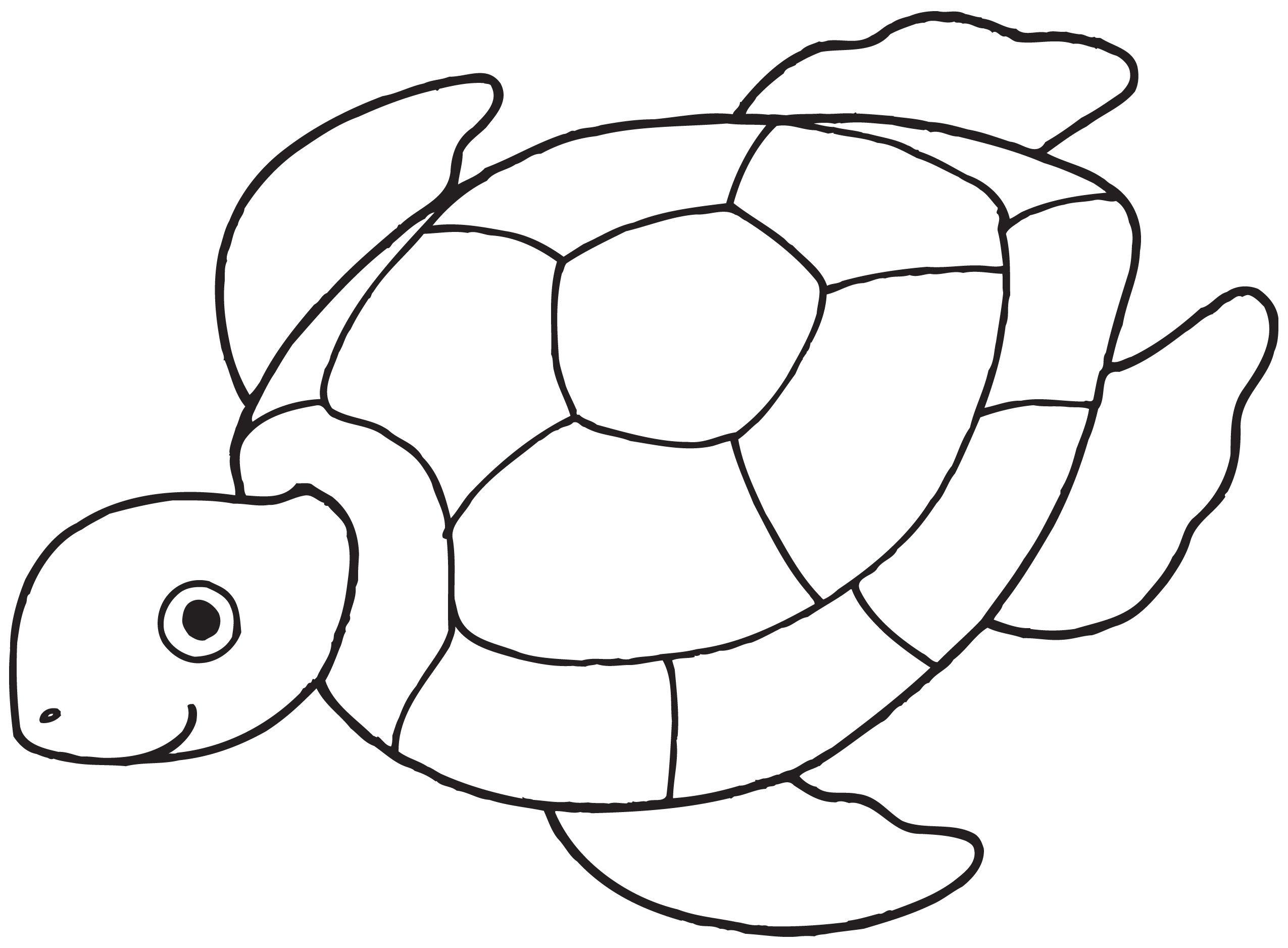 Simple Sea Turtle Drawing