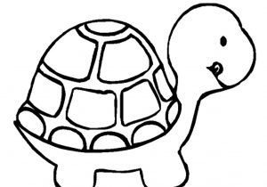 300x210 drawing of a turtle how to draw a sea turtle simple sea turtle