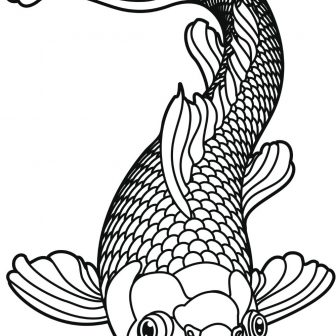 336x336 Catfish Images Drawing Outline Skeleton Channel Pictures Carmi