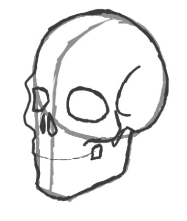 381x451 Simple Skull Side Drawing