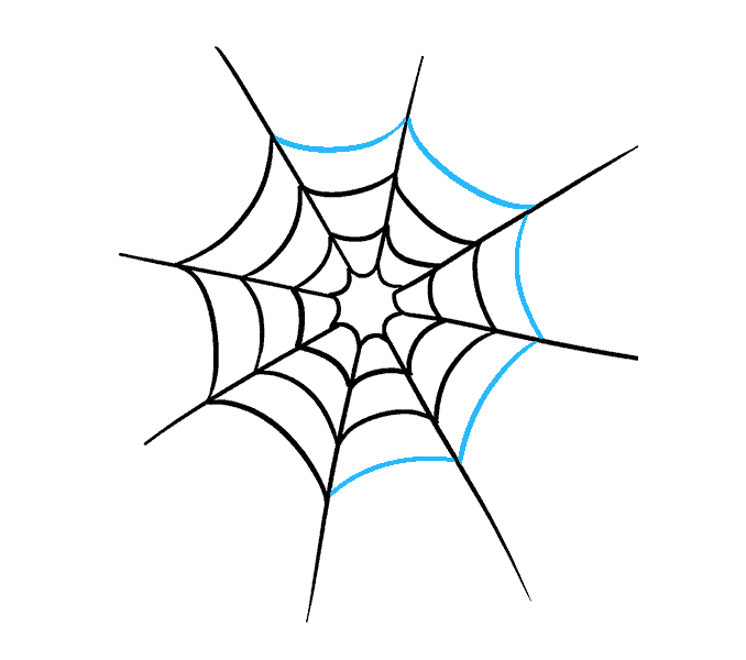 Spider web simple. Drawing free download best