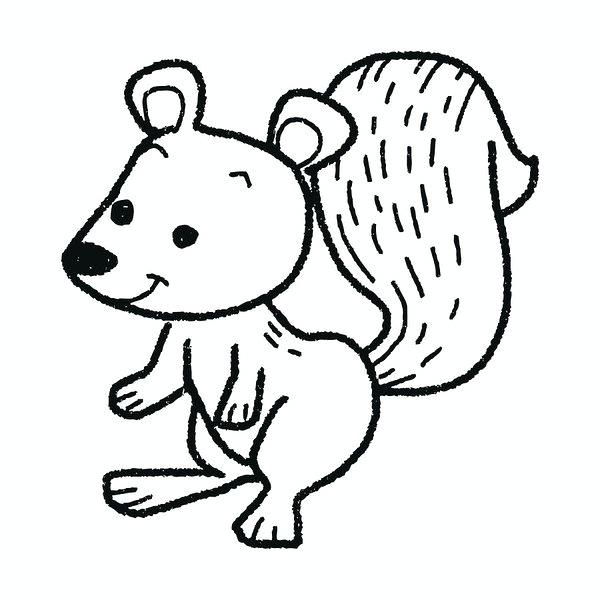 600x600 drawing squirrel squirrel drawing tags drawing squirrel easy