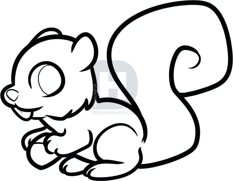 926x720 easy squirrel drawing draw squirrel easy squirrel drawing step