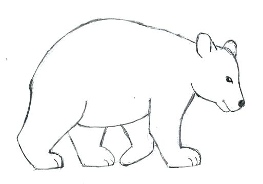 513x359 Simple Drawing Of A Teddy Bear