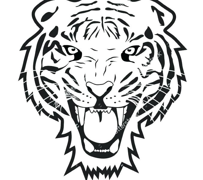 678x600 easy to draw tigers simple tiger google search easy draw tigers