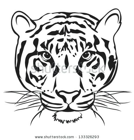 449x470 tiger outlines tiger outline drawing tiger face outlines
