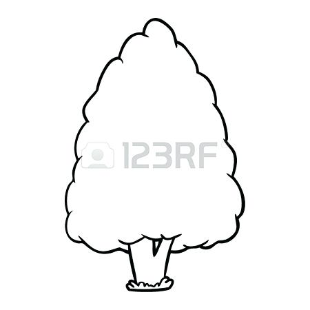 450x450 Tall Tree Drawing Coconut Tall Tree And Long Branch Beautiful Are