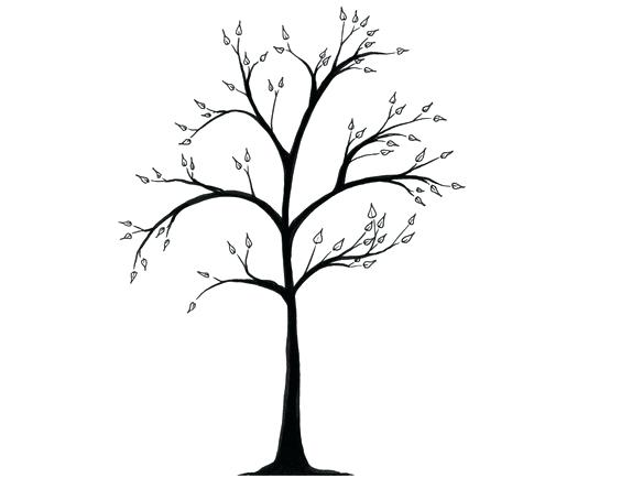 564x434 winter tree drawing winter tree simple winter tree drawing