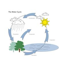 236x236 simple water cycle coloring