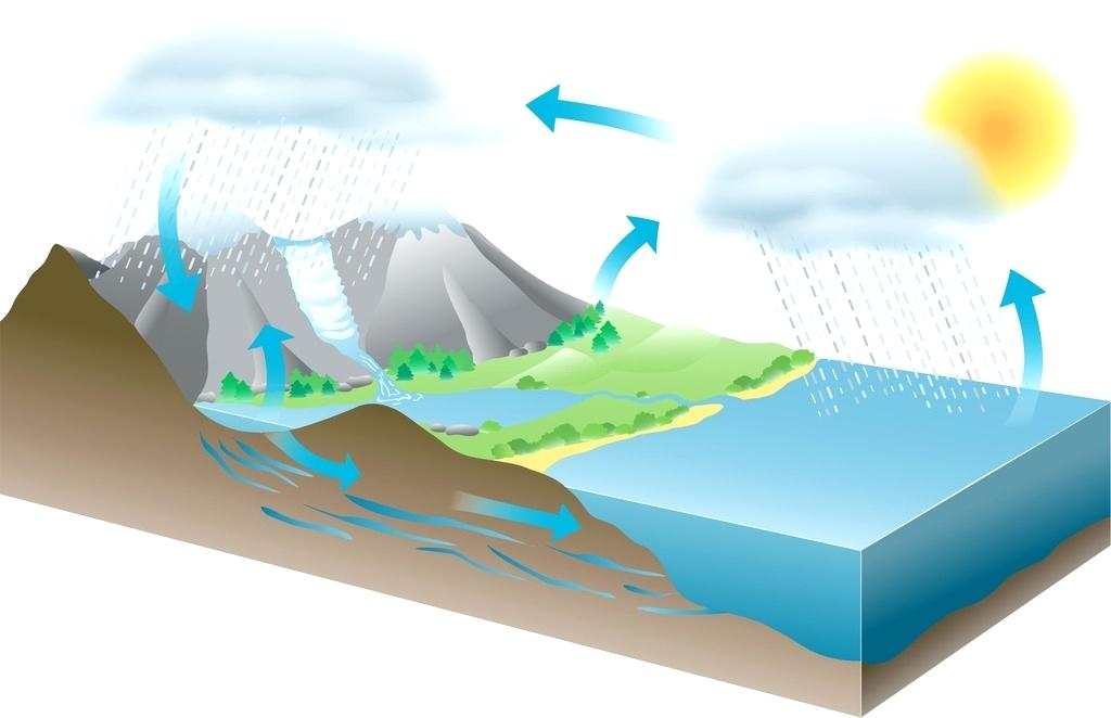 1024x662 water cycle diagram the water cycle simple water cycle diagram