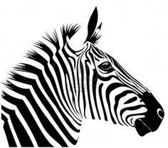 236x208 popular zebra drawing images zebra art, zebra drawing, zebra