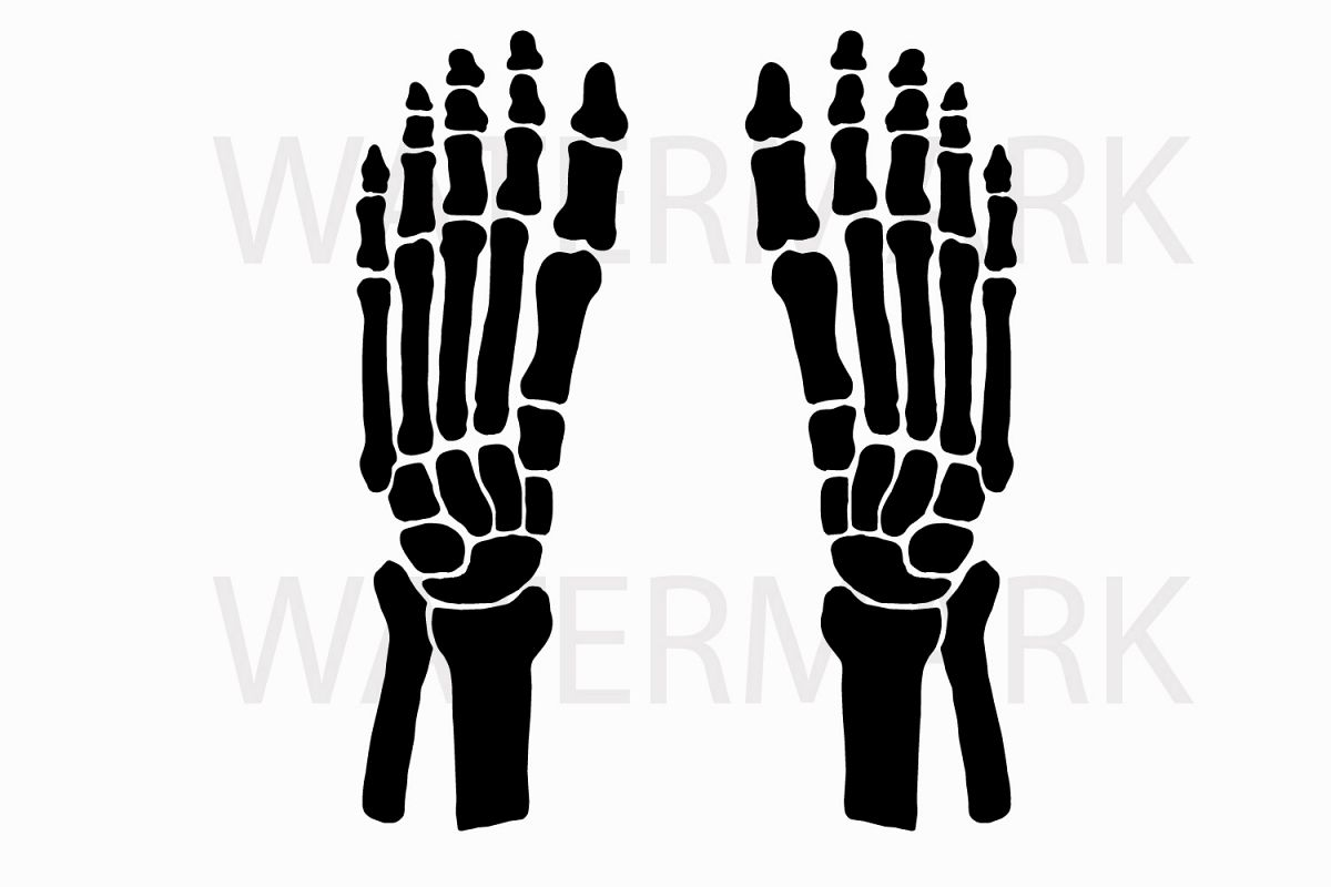 1200x800 Skeleton Feet Left And Right