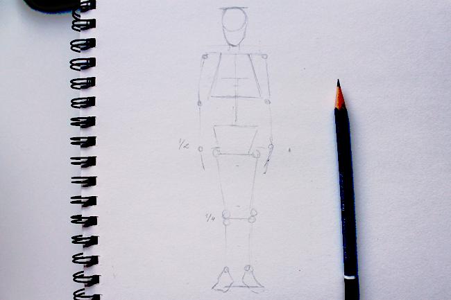 650x433 The Artistic Study Of Anatomy