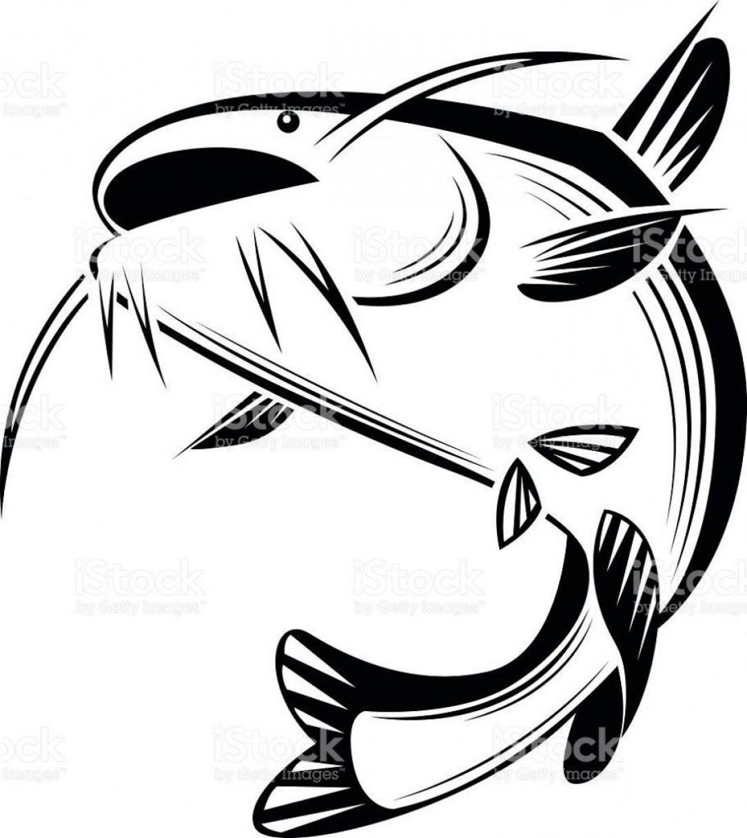 1084x1215 Chinese Catfish Drawing Skeleton Cute Cool Flathead