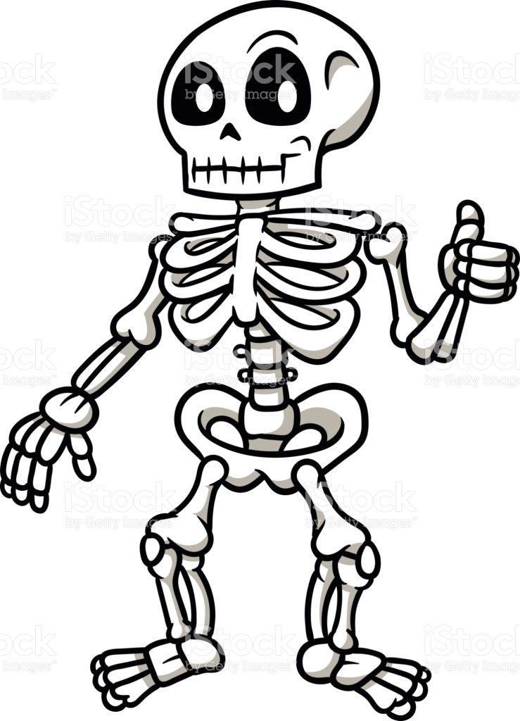 739x1024 Skeleton Drawing Cartoon For Free Download