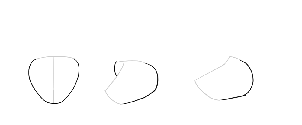 1000x416 How To Draw A Wolf Head And Shoulders, Knees And Paws
