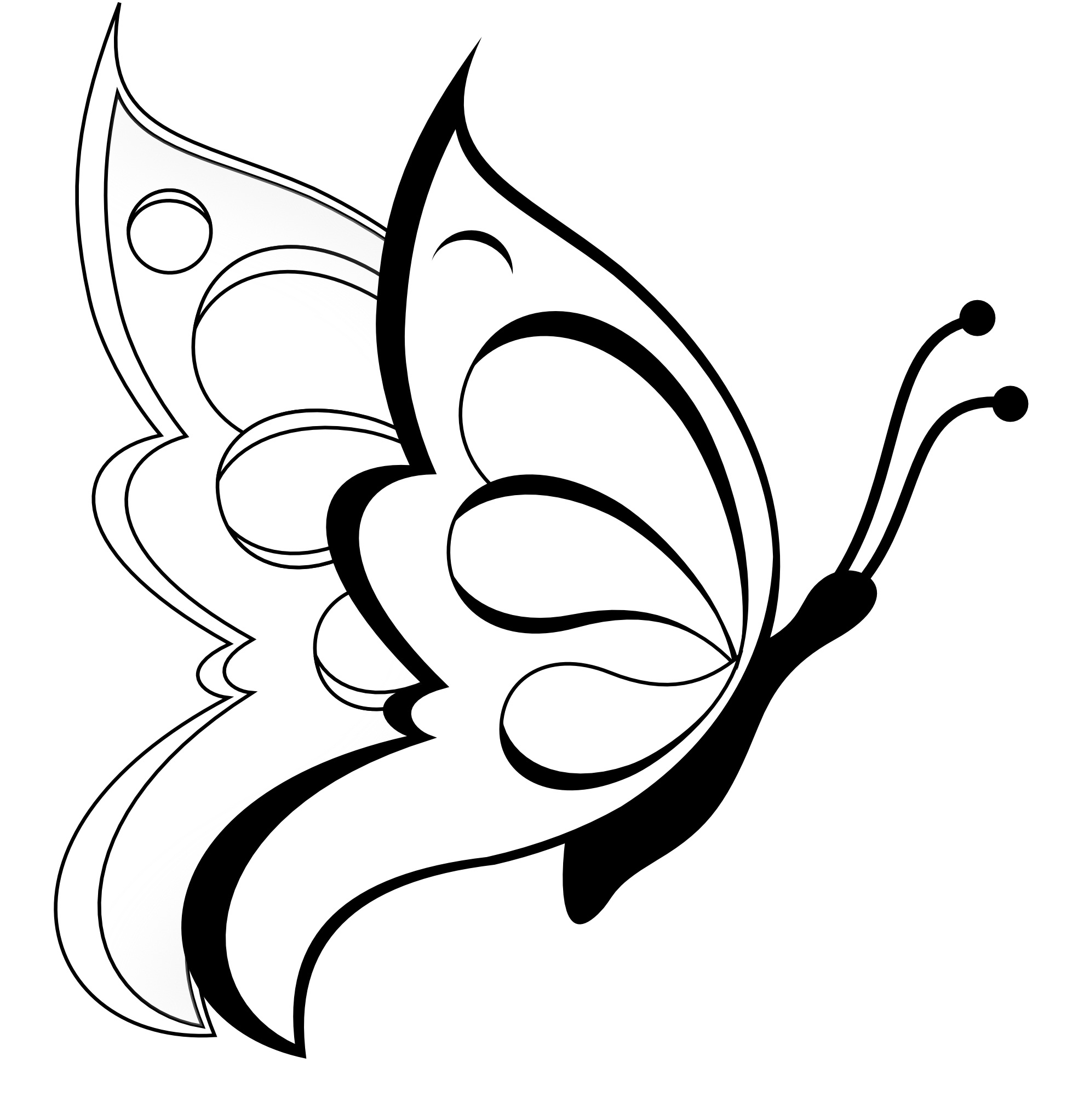 Butterfly Art Drawing With Skull Side View