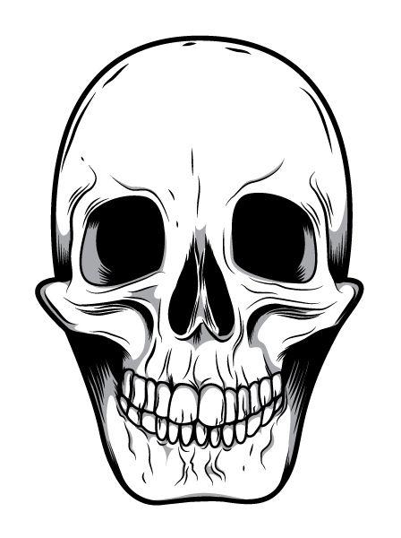 448x600 Skeleton Face Clip Art Mean Skull Drawings Good Ideas