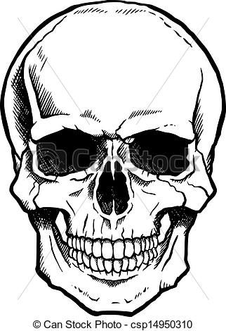 322x470 Skull Illustrations And Clip Art Skull Royalty Free