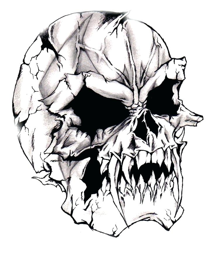 736x875 Cool Skulls Drawings