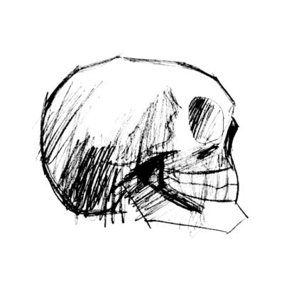 400x400 Skull Sketch Tumblr