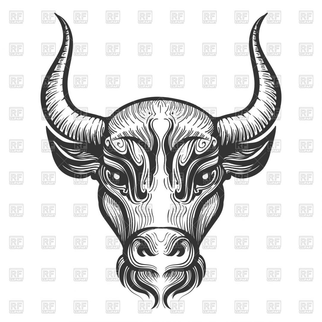 1084x1084 Bull Skull Drawing Step
