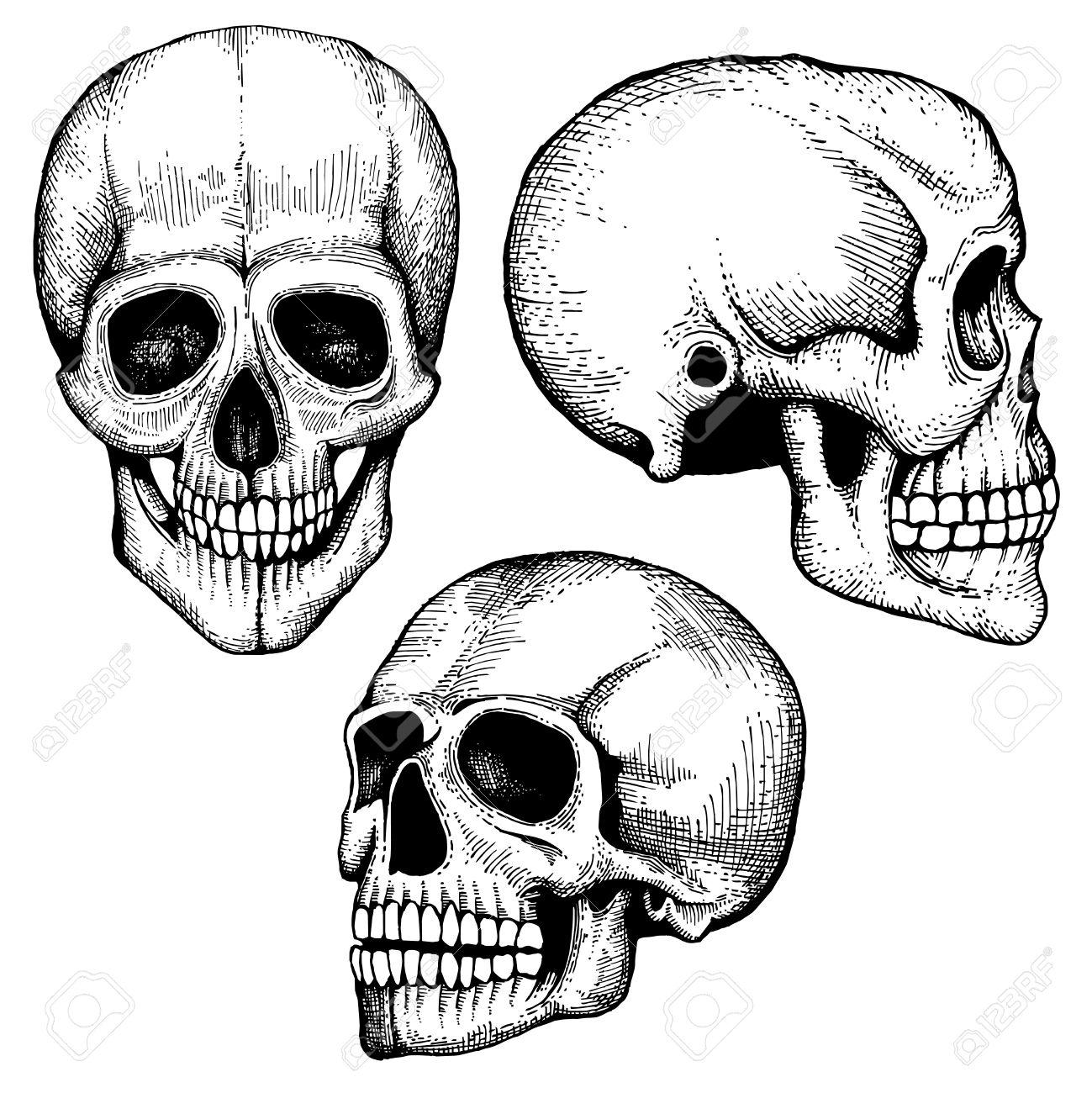 1299x1300 Death Clipart Skull Drawing